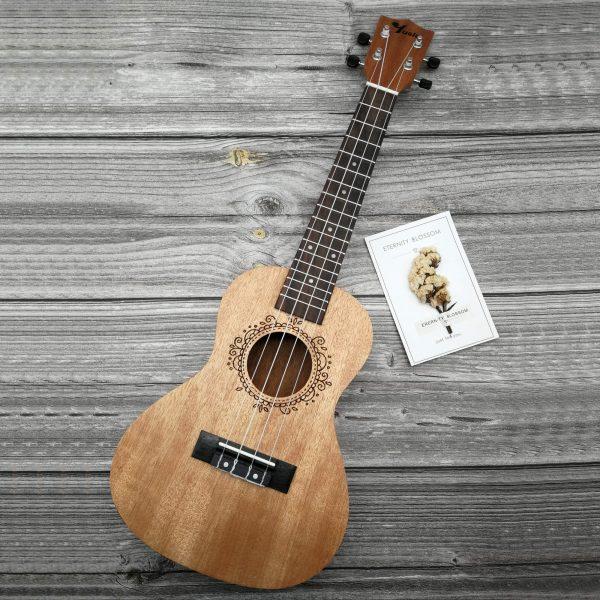 Square Concert Okoume ukulele