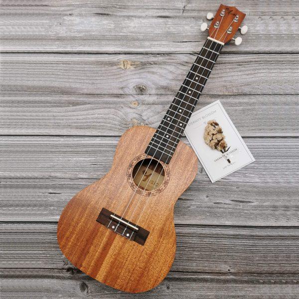 Square Sapele ukulele engrave white head