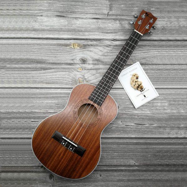 Square Ukulele Product Shot mahogany Tenor