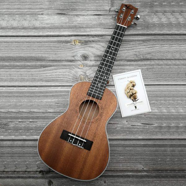 Square Ukulele Product Shot mahogany concert